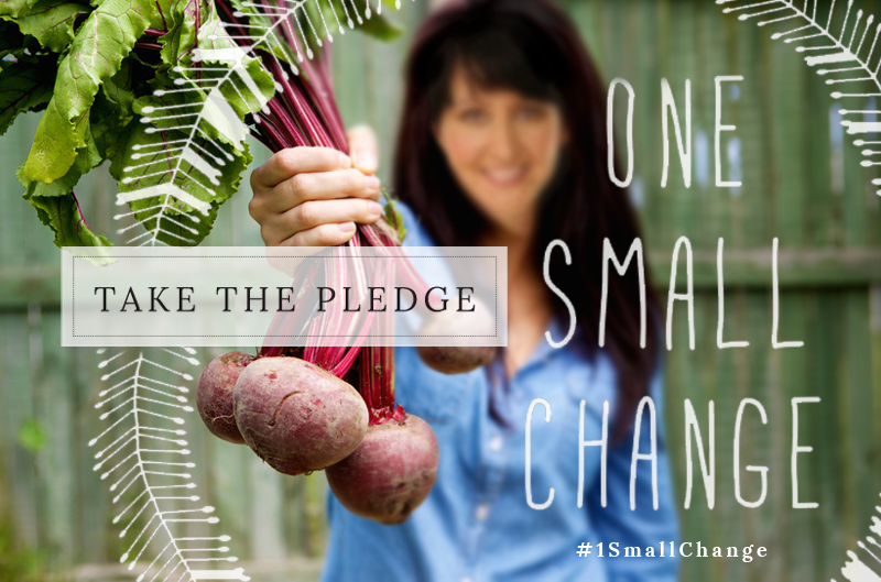 Take The Pledge: One Small Change