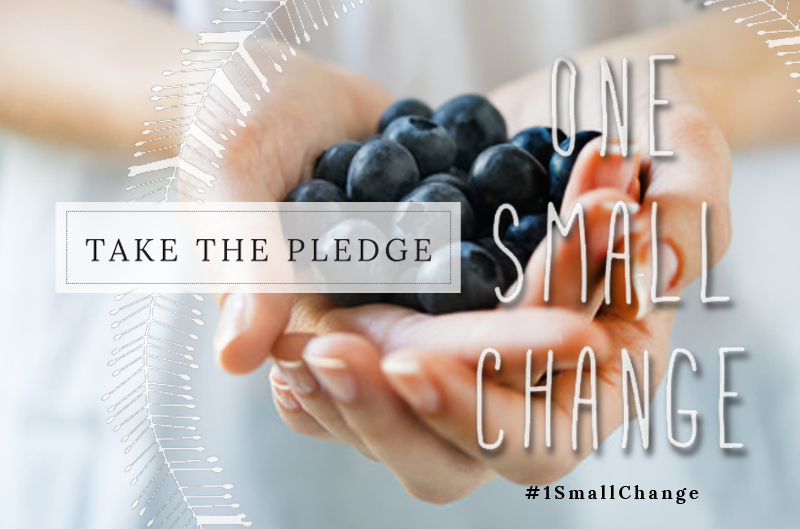 Take the Pledge - One Small Change